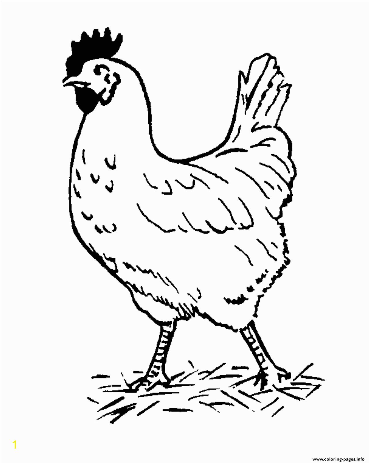 farm animal s hen free53fb