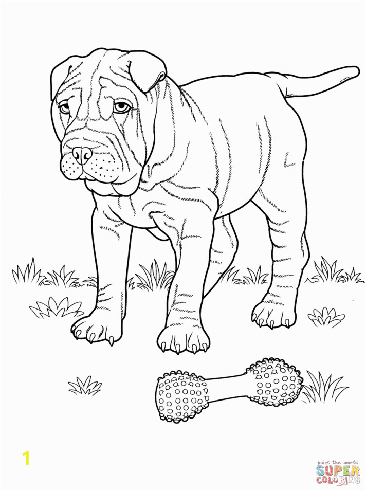 shar pei coloring page dog pages for kids dogs free baby puppy valentine and cat halloween sheets cartoon easy simple preschoolers 712x955