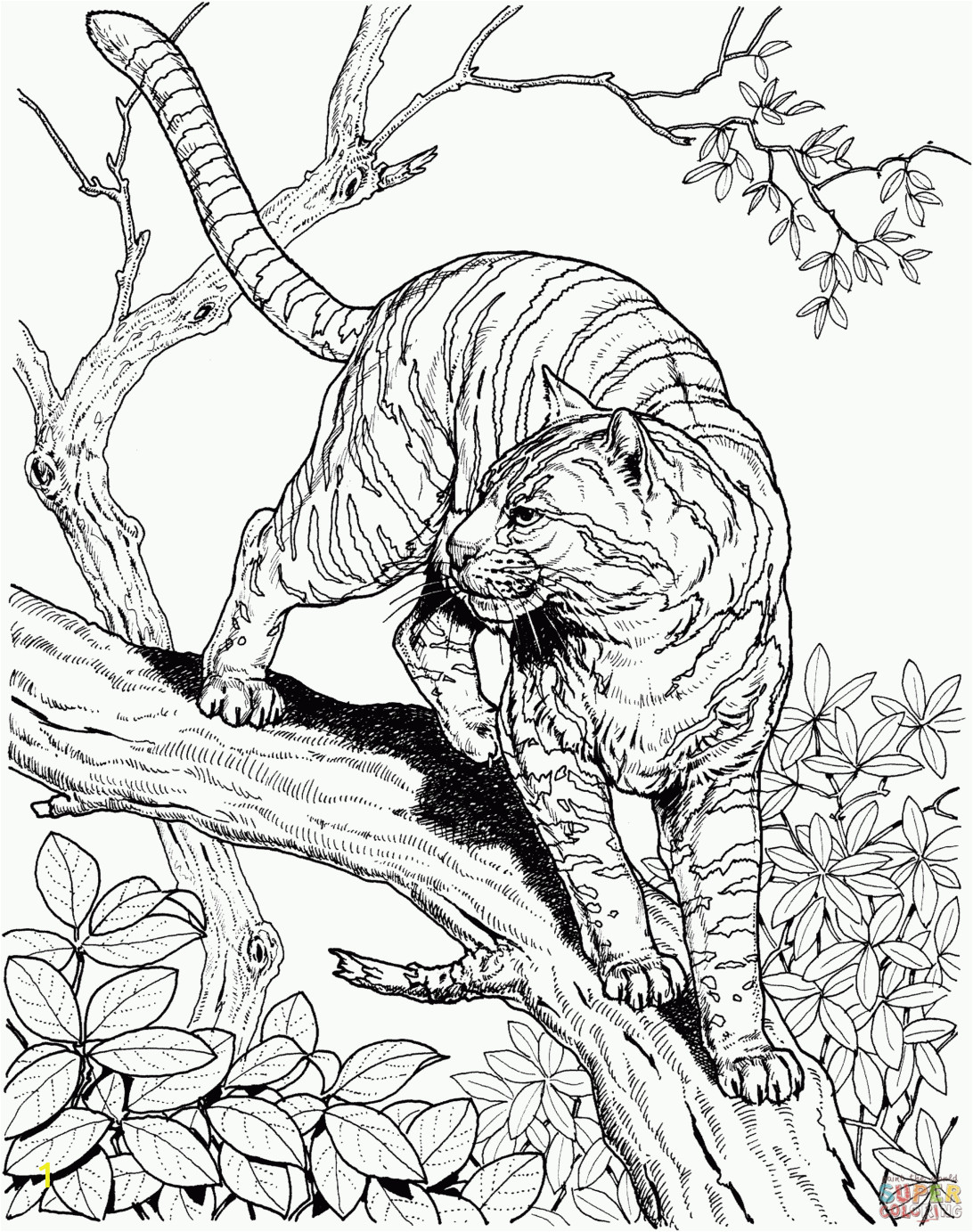 realistic dog coloring pages to print and color free printable animal for kids baby sheets valentine puppy cartoon easy cat toddlers 1092x1383