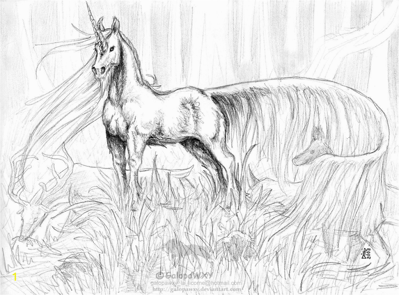 Realistic Unicorn Coloring Pages the Great Unicorn by Galopawxy