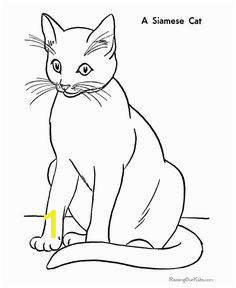 4252bddedbba3ab9d17f5debcdbb7979 flower coloring pages cat coloring pages for kids