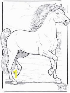 e20da6c17d41a568c917c46b0a616de2 horse coloring pages adult coloring pages