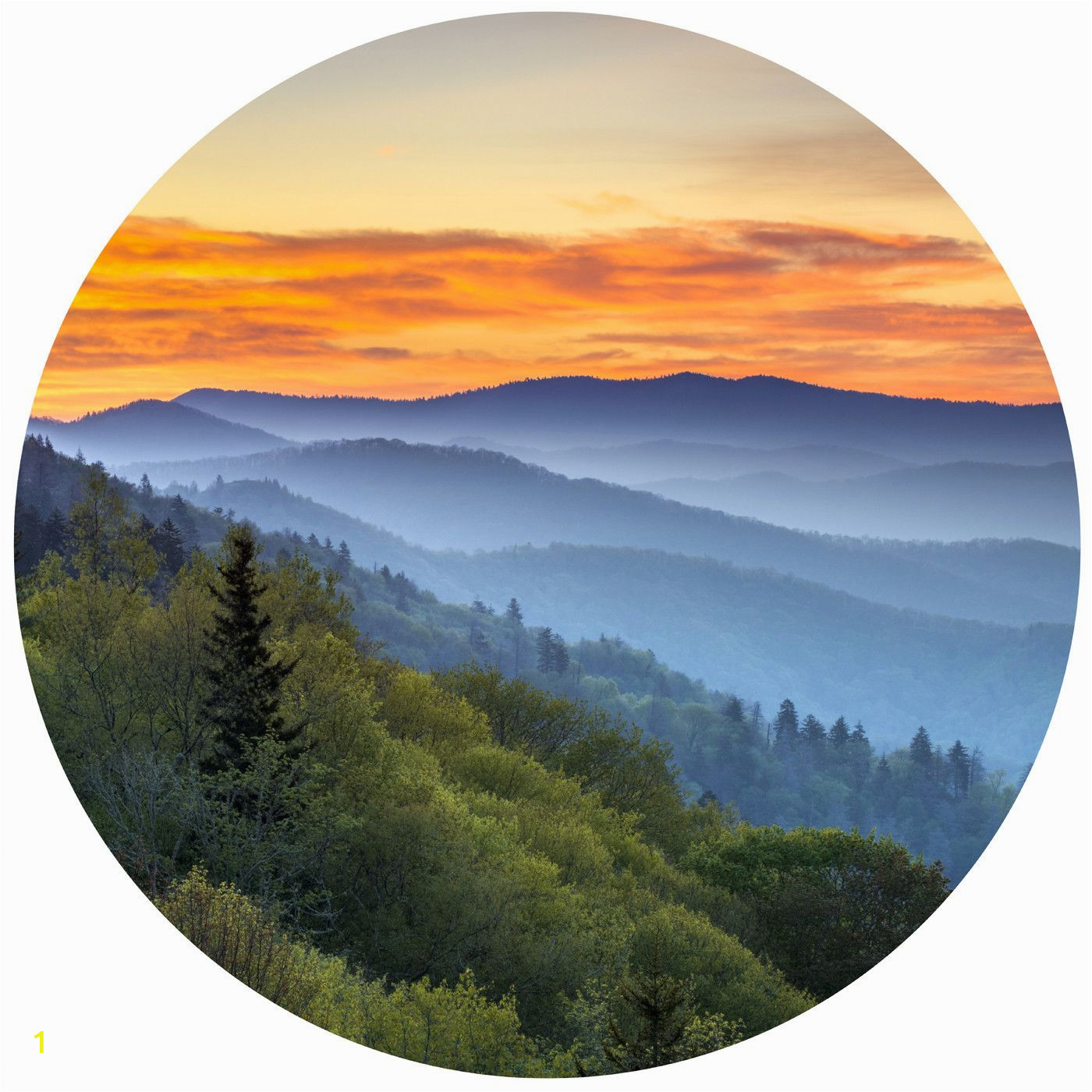 Smoky Mountain Wall Murals Into the Mist Circle Wall Decals