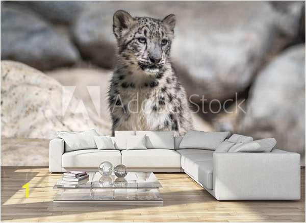home design living room sofa apartament marco cute baby snow leopard A
