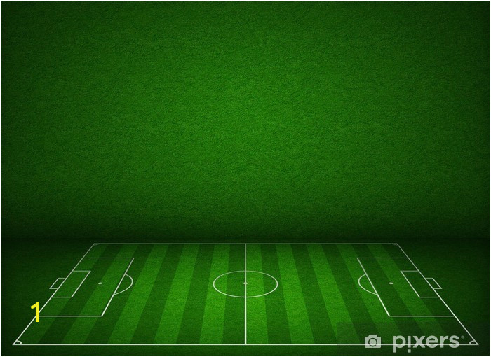 wall murals soccer or football field or pitch side view with proper markings