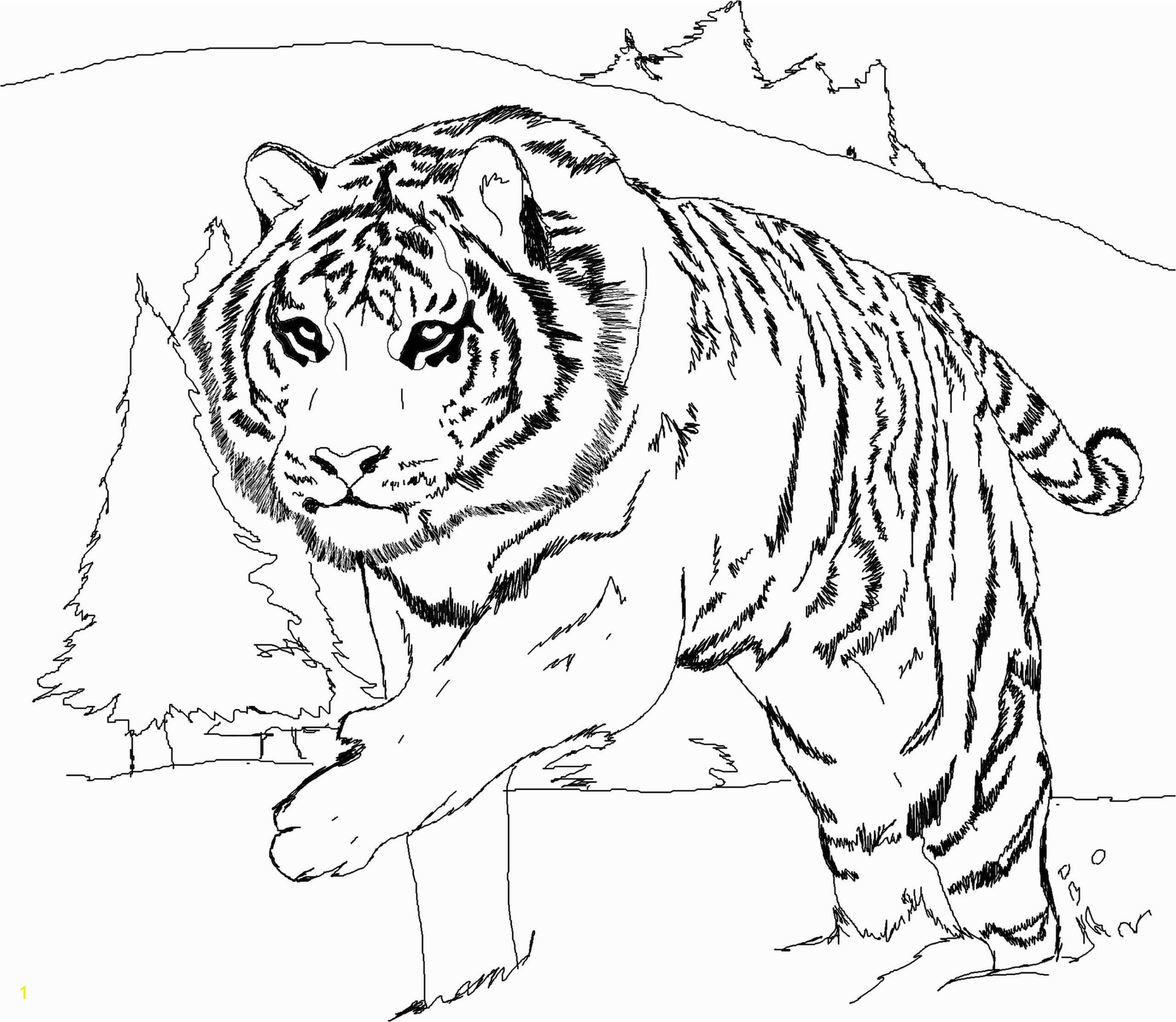 tiger coloring in pages fresh 59 most awesome tiger coloring pages for kids printable of tiger coloring in pages