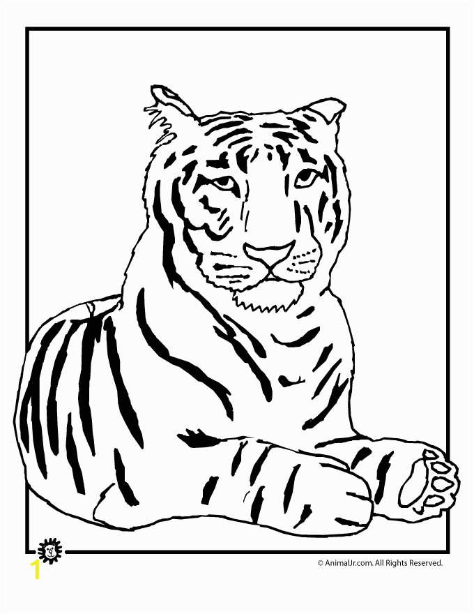 Tiger Outline Coloring Page Outline A Tiger Az Coloring Pages