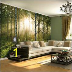 14b6ec909ca9f318b d db wall murals color binations