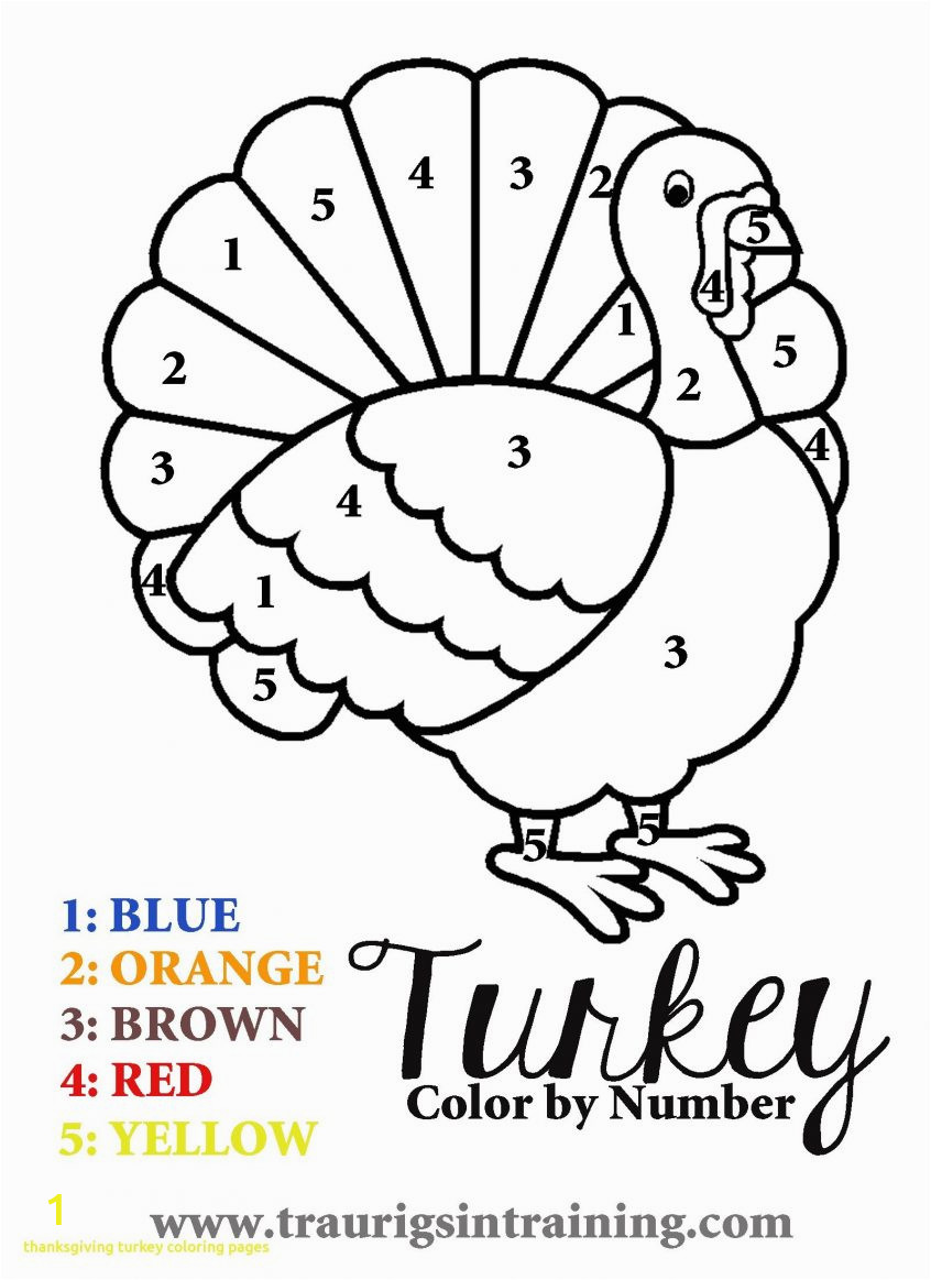simple coloring picture of turkey thanksgivinges with color free to print animals printable for adults fairies pages ideas thanksgiving panda octopus page sheep bear 846x1163