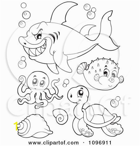Undersea Creatures Coloring Pages Clipart Outlined Mean Shark Octopus Puffer Fish and Sea
