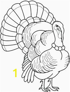 Wild Turkey Coloring Page 1492 Gambar Printable Turkey Coloring Page Terbaik