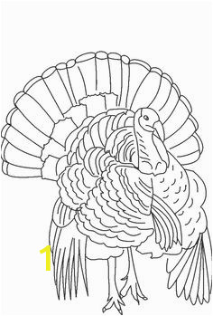 29e0bb236c8216b7d71aa48e5d5768e9 turkey coloring pages thanksgiving coloring pages