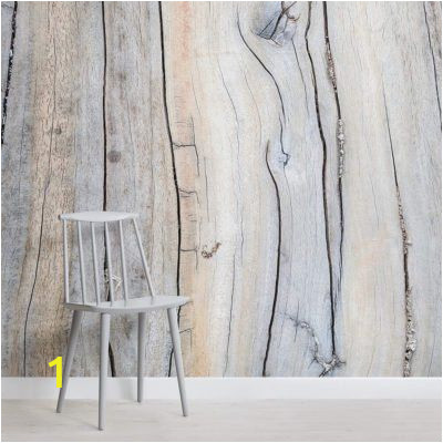 Wood Effect Wall Mural Driftwood Detail Wall Mural In 2019 Hanger