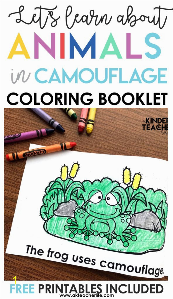 camouflage animals coloring book booklet 591x1024