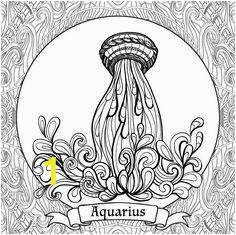 ce6e ef1b028b e669dbf aquarius zodiac zodiac art
