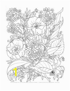 f e d173ed6f31b0516 printable adult coloring pages coloring pages for adults