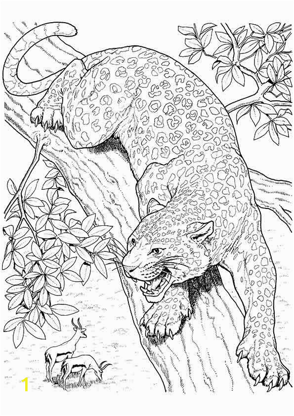 Coloring Pages Of Jaguars Printable 10 Best Jaguar Coloring Pages for Little Es with Images