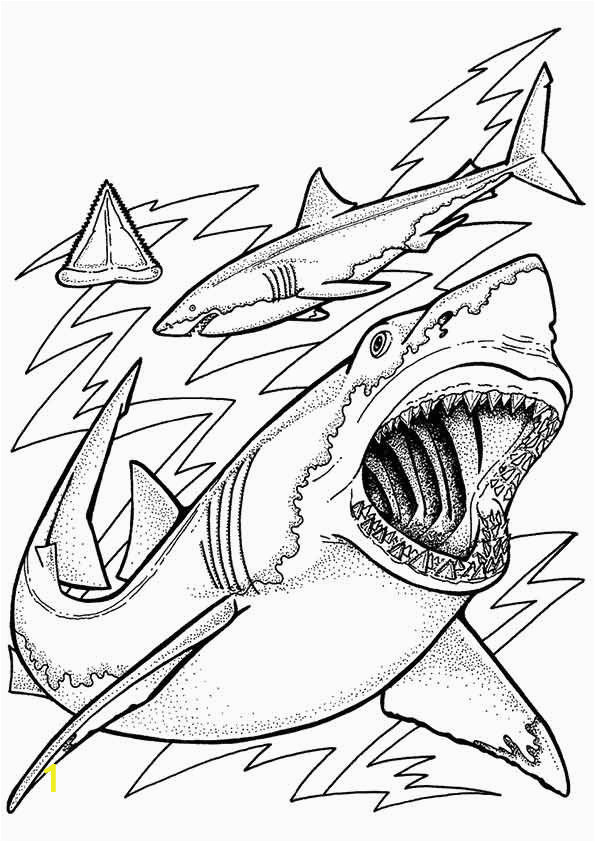 Coloring Pages Of Sharks Printable Print Coloring Image Momjunction