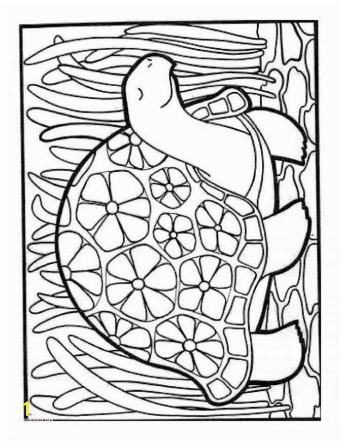 turkey drawing for kids lovely lovely coloring pages dolphin for kids picolour of turkey drawing for kids 672x870