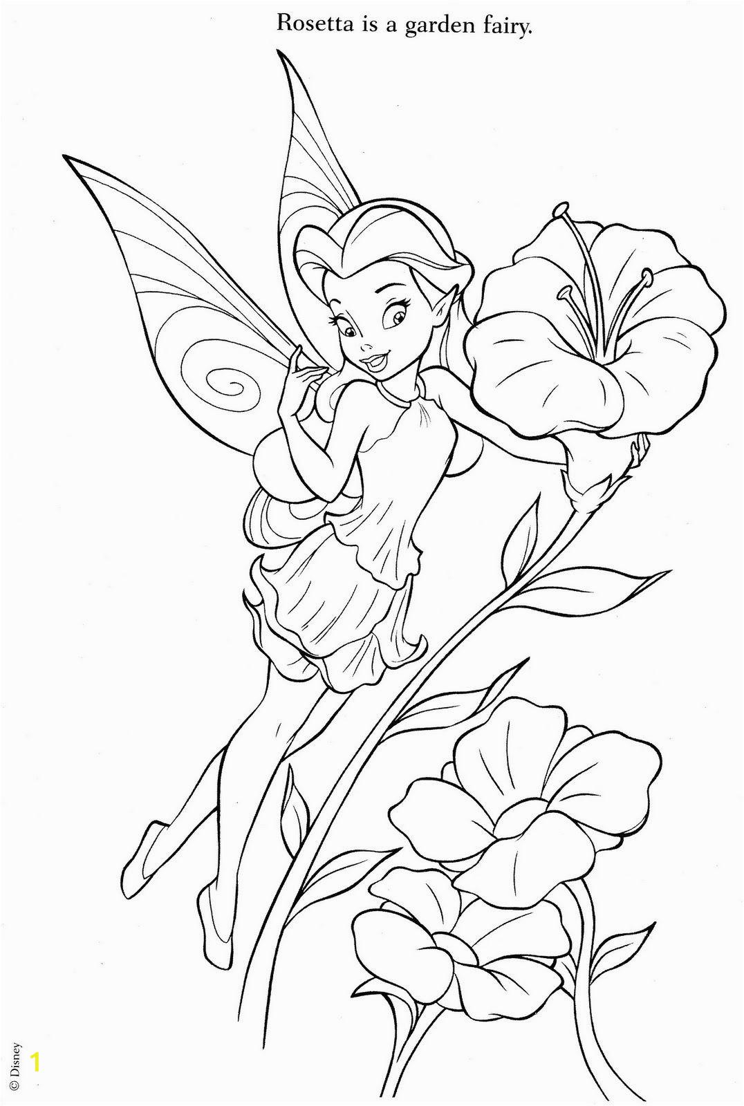 Disney Fairies Coloring Pages Rosetta   divyajanani.org