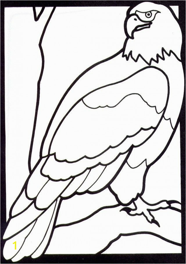 awesome coloring pages eagle for kindergarden of coloring pages eagle for kindergarden 1