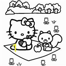 The Kitty A Fun Picnic color