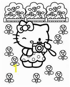afcf58cc7ad530db1a hello kitty cartoons