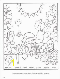 7773c d bd f9dc childrens bible ve ables garden