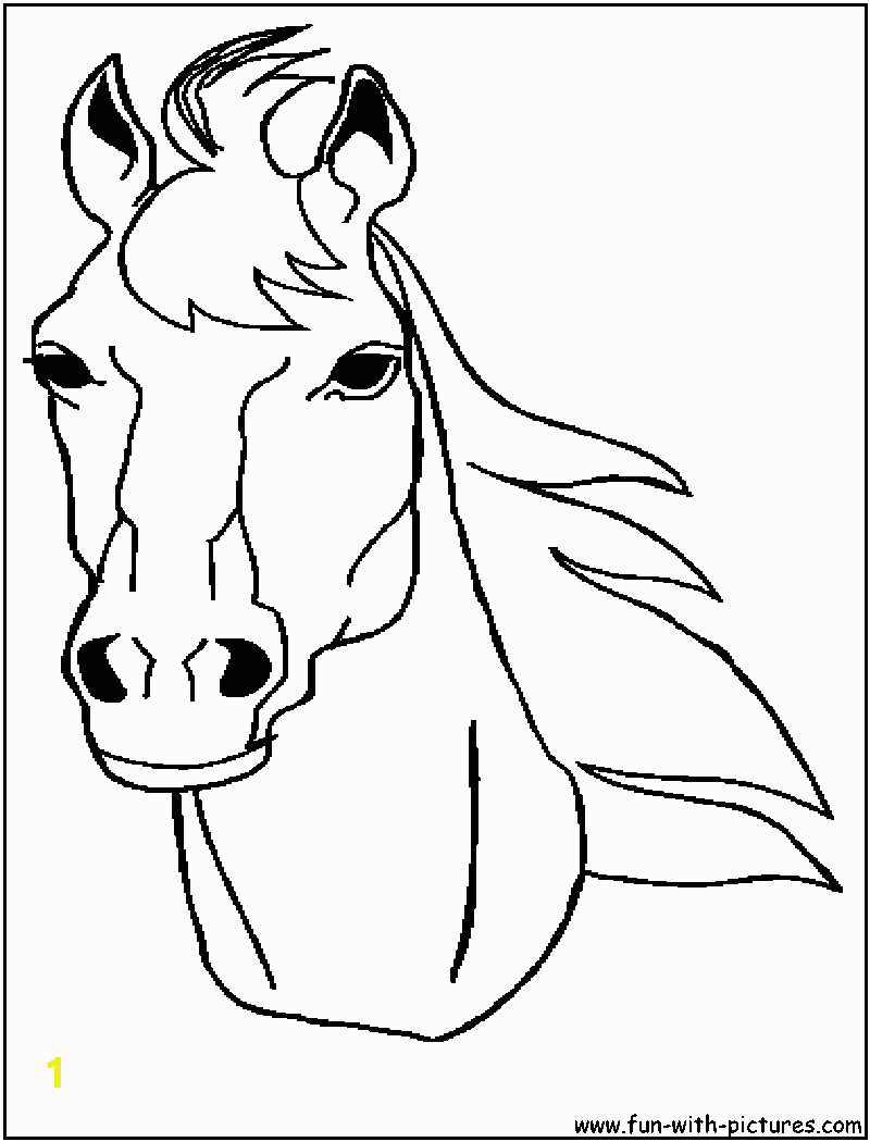 animal stronger horse head coloring to