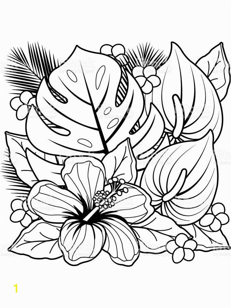 daisy flower garden journey coloring pages 1