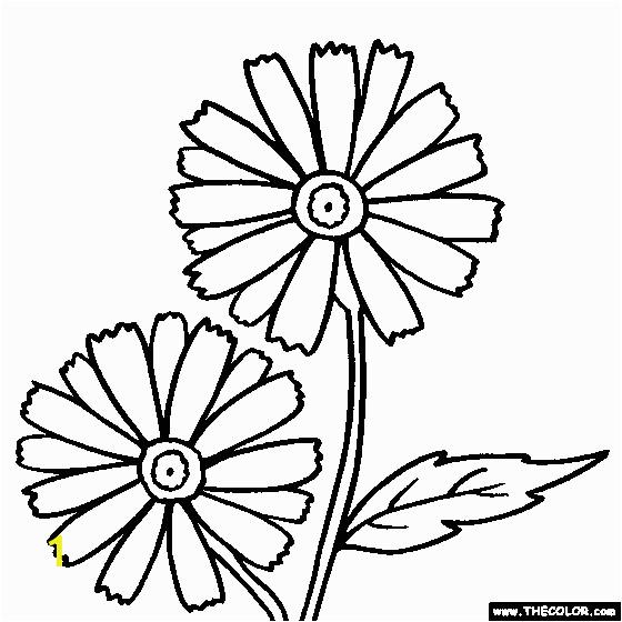 daisy flower garden journey coloring