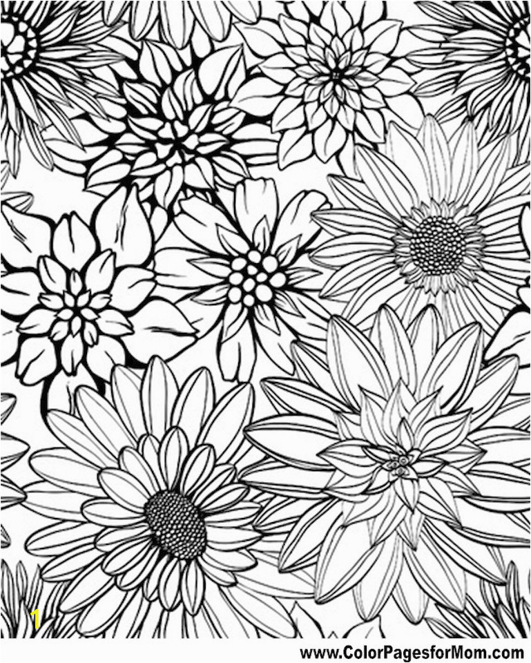 detailed flower coloring pages for adults printable ycv42