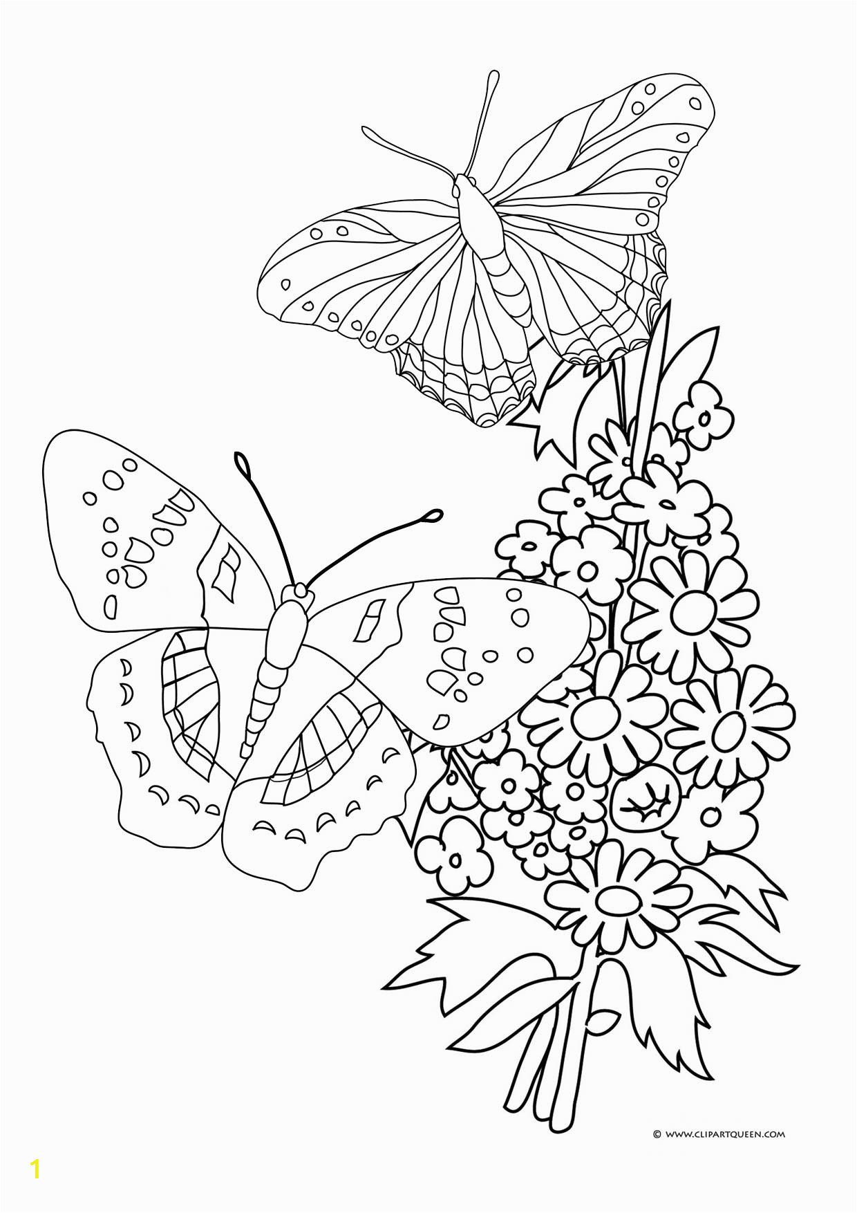 flowers and butterflies drawing