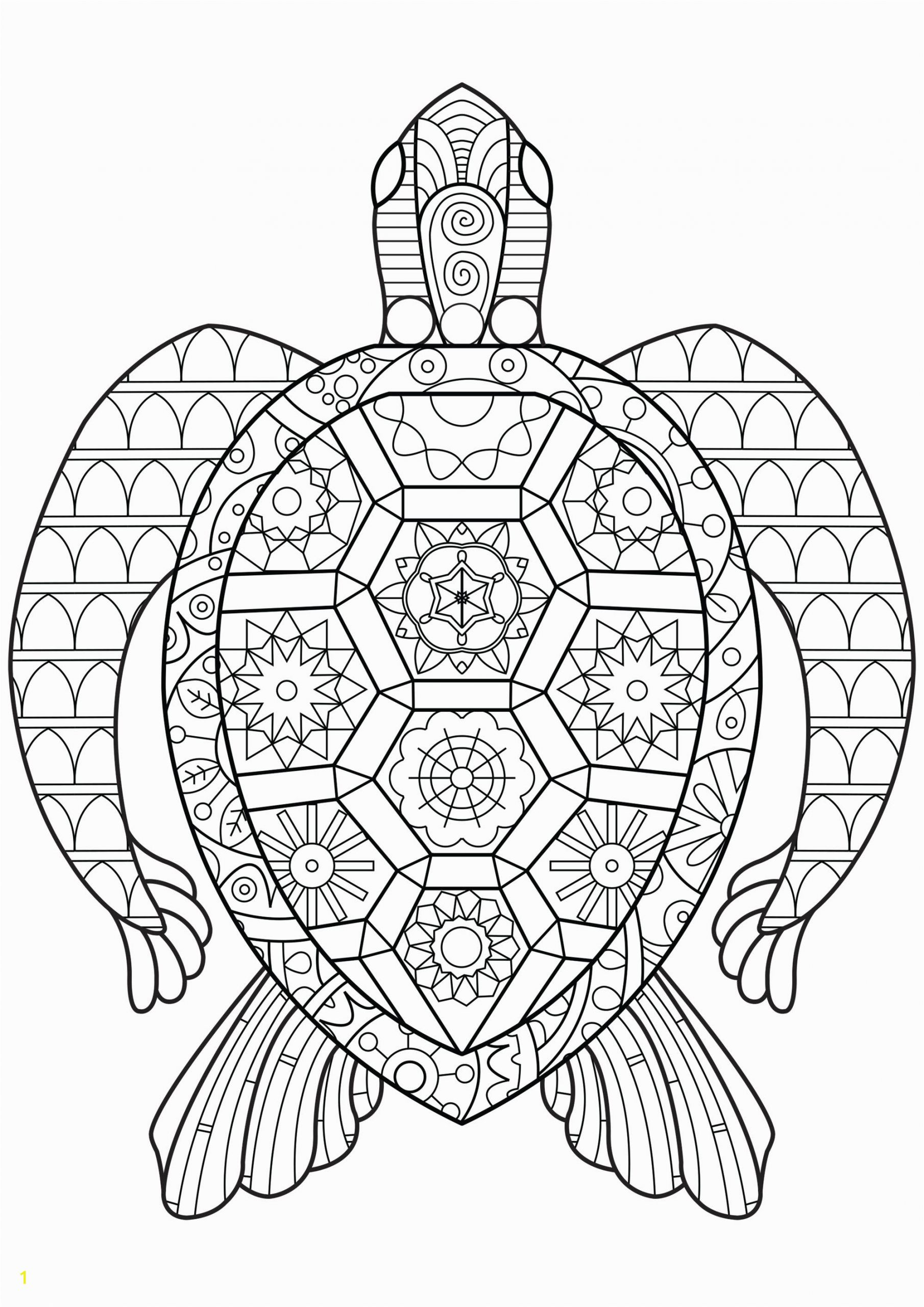 image=turtles coloring zen turtle 1