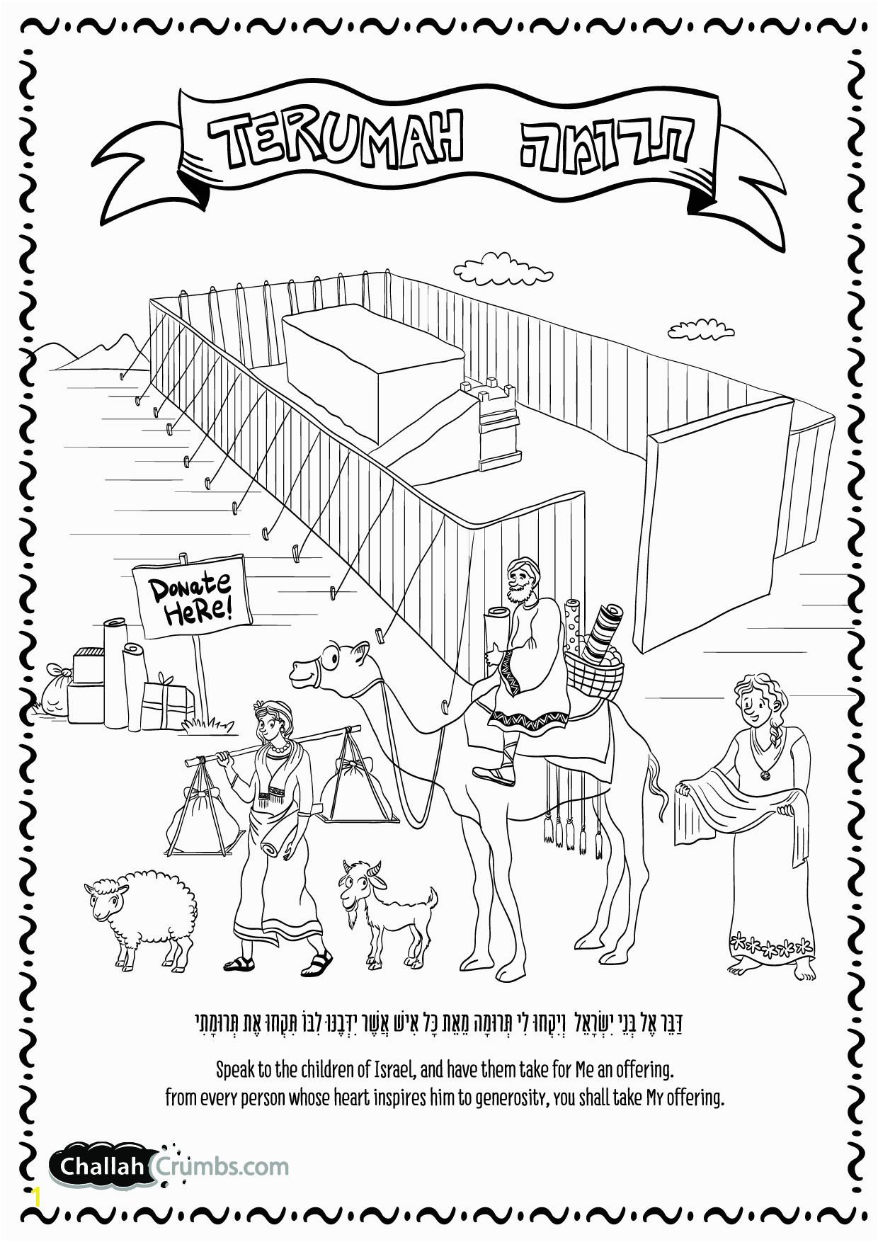 tabernacle drawing