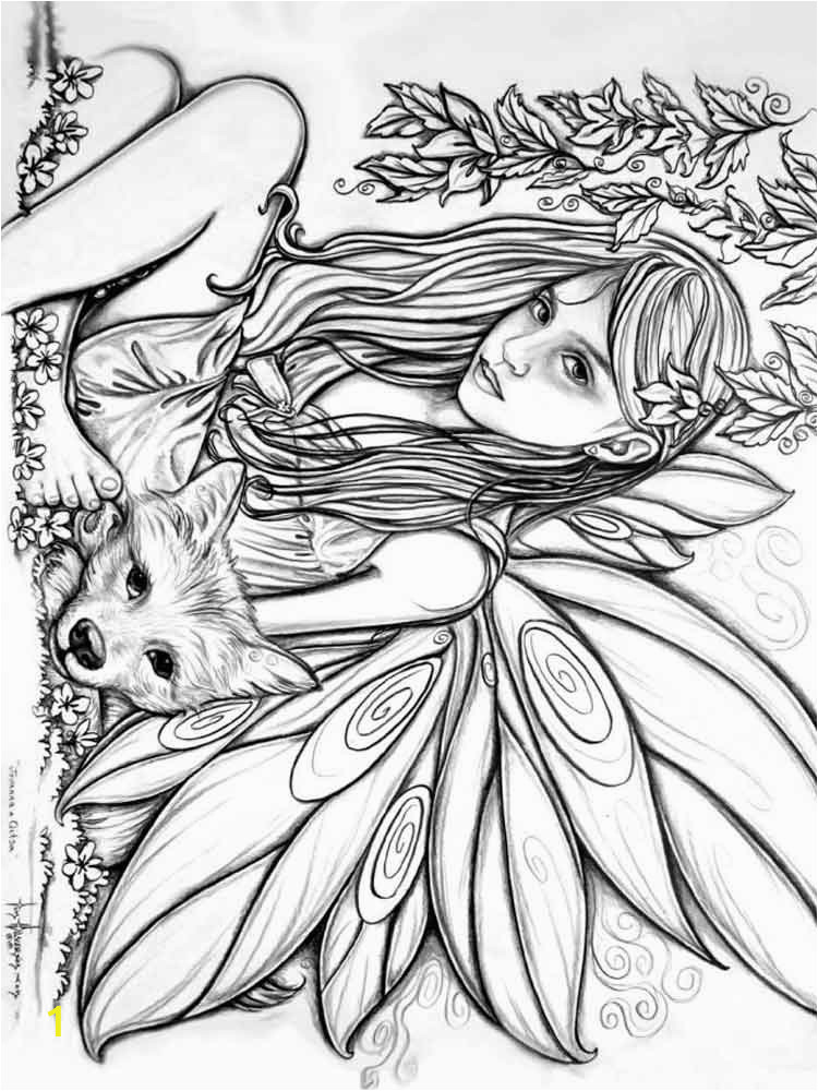 275 best images about coloring fairies