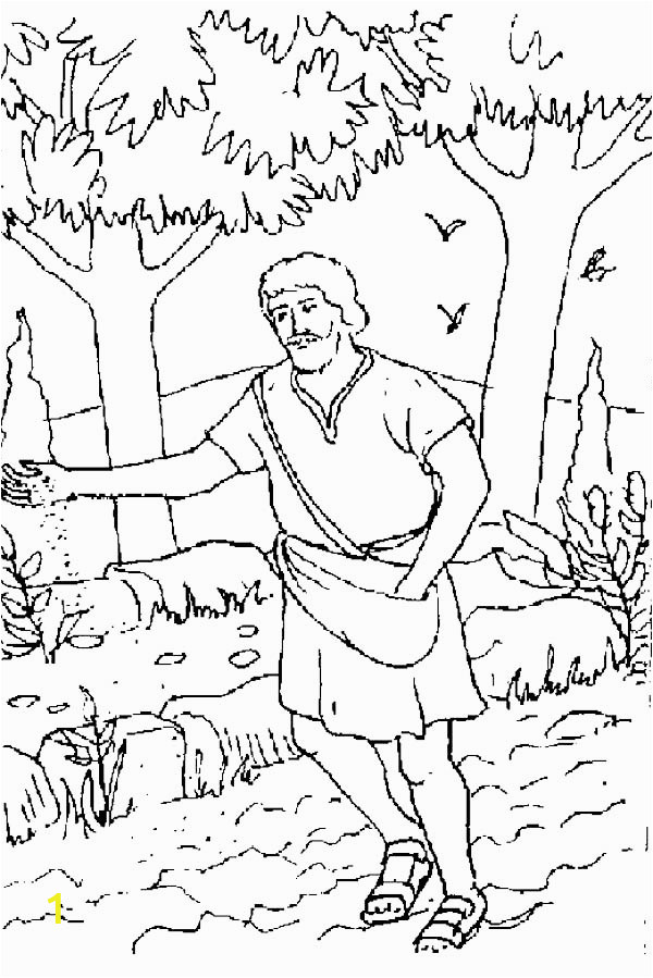 parable of the sower coloring page