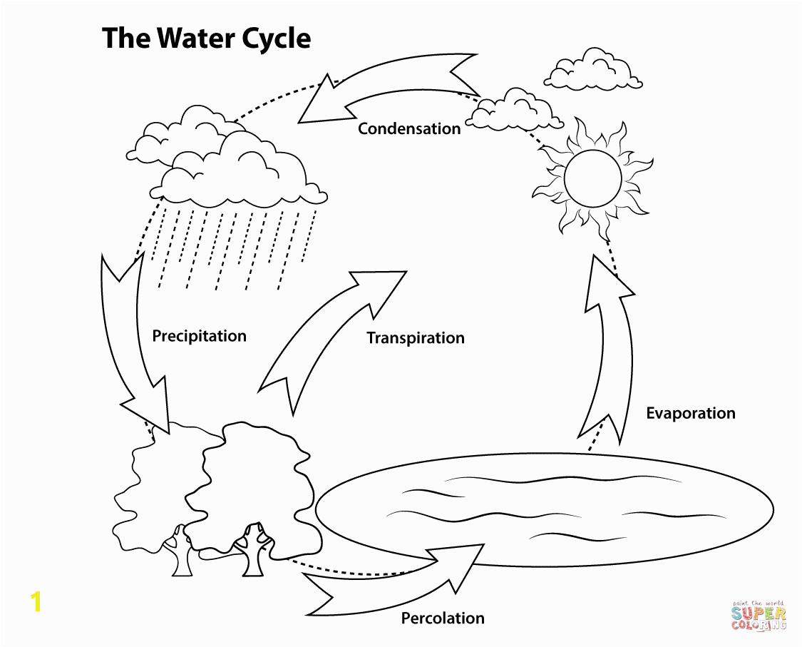 Printable Coloring Pages Of the Water Cycle Simple Water Cycle Coloring Page
