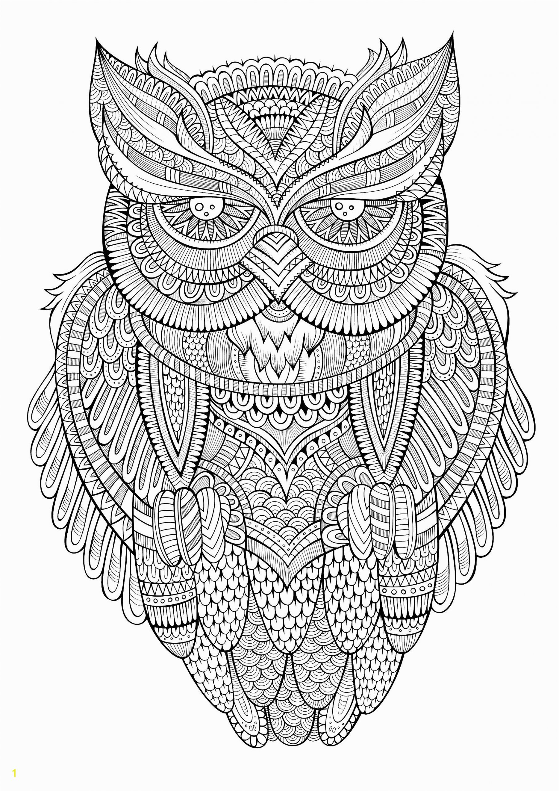 image=owls coloring page owl antistress 1