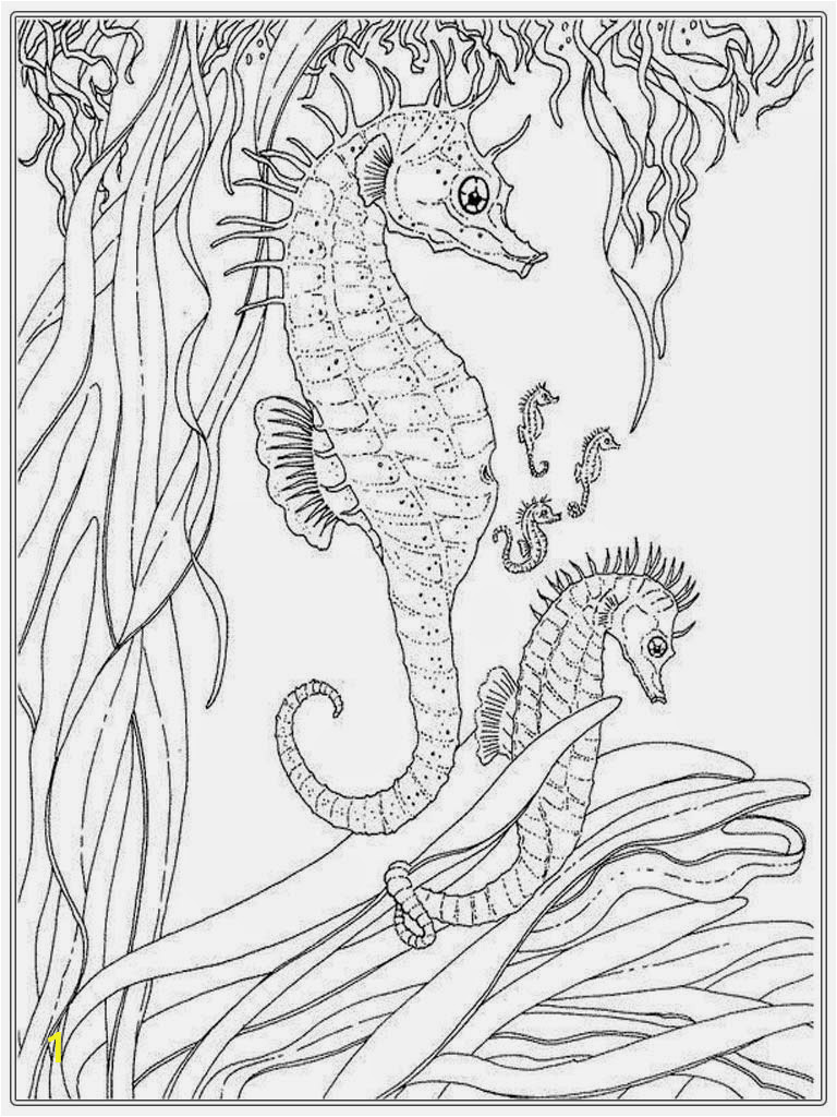 realistic seahorse coloring pages for