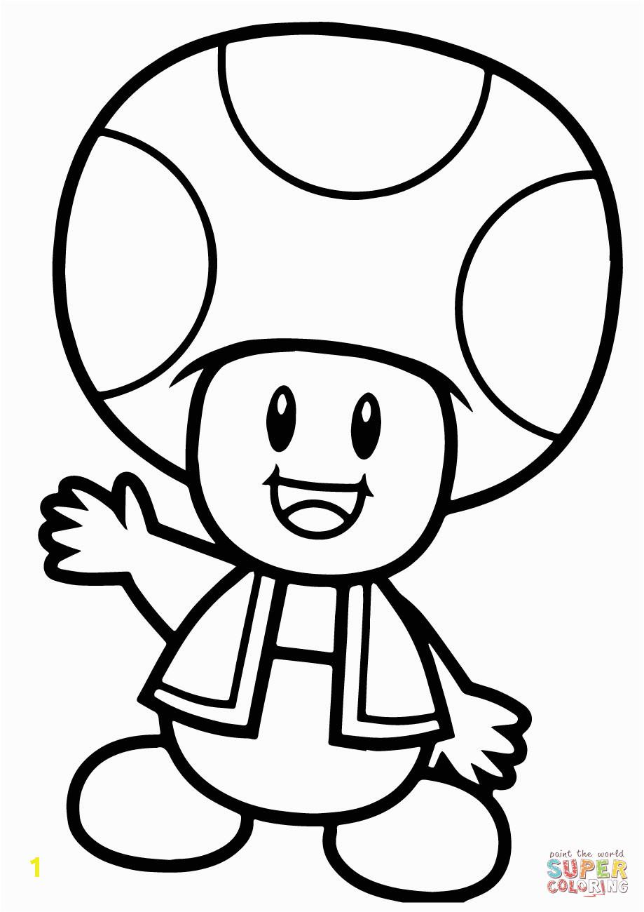 super mario bros toad