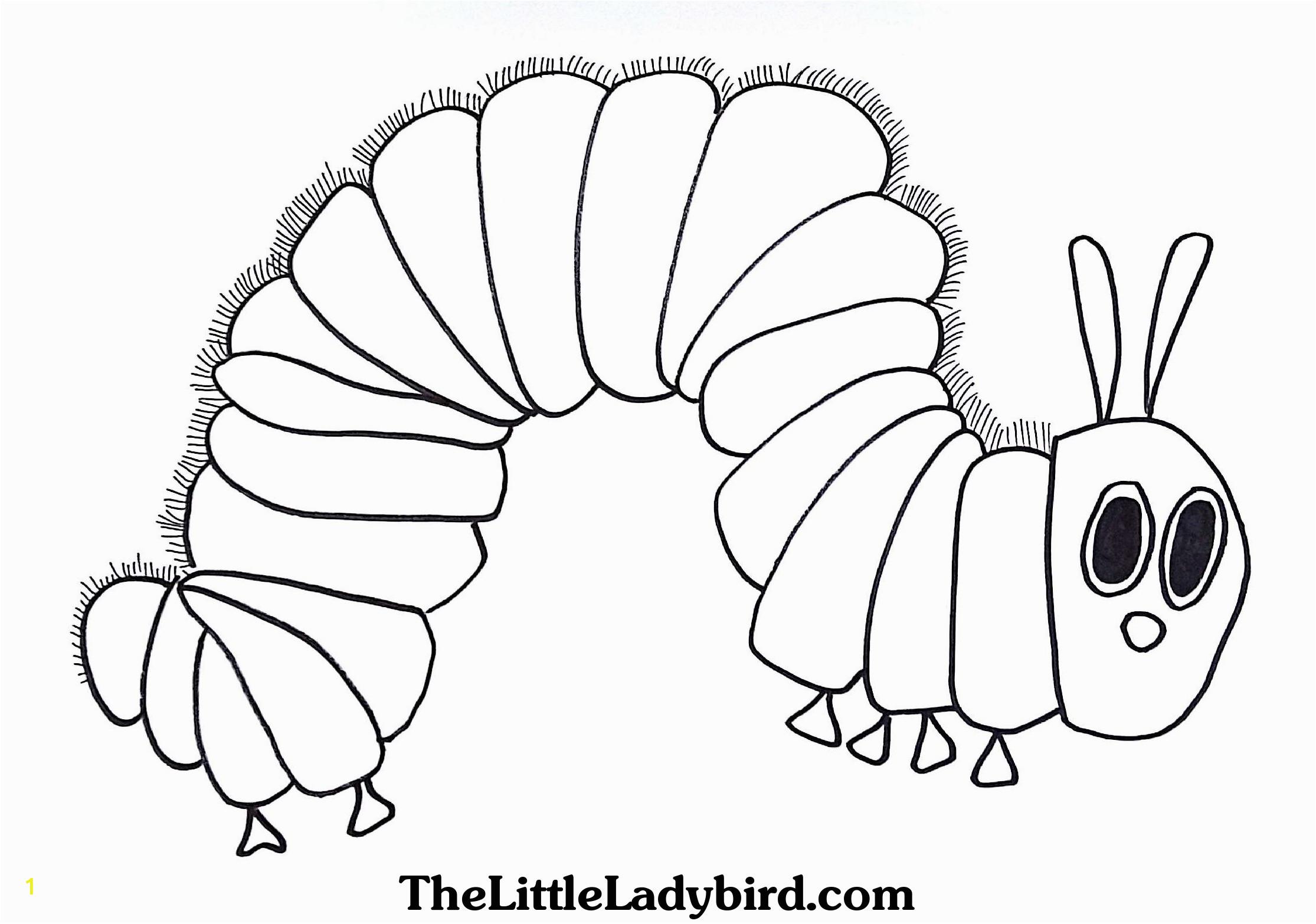 hungry caterpillar drawing