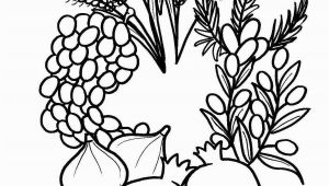 7 Species Of israel Coloring Page A Great Seven Species Coloring Sheet