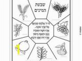 7 Species Of israel Coloring Page the 7 Species Date Fig Olive Pomegranate Grape