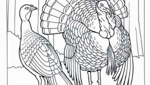 A Turkey for Thanksgiving Coloring Pages Thanksgiving Coloring Pages Fresh S S Media Cache Ak0 Pinimg