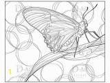 Adult Coloring Page butterfly butterfly Coloring Page butterfly Digi Adult Coloring Page Nature Insect Instant Download Leaf Moth butterfly Drawing