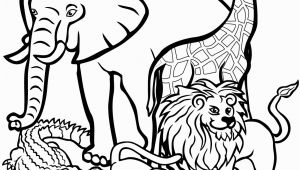 African Animals Coloring Pages for Kids African Animals Coloring Page