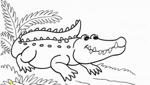 Aligator Coloring Pages Alligator Coloring Pages 107 Best Alligators Pinterest