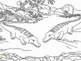 Aligator Coloring Pages American Alligator Coloring Page Elegant Alligator Coloring Pages