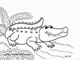 American Alligator Coloring Page 30 American Alligator Coloring Page